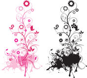 Floral and swirls Royalty Free Stock Image