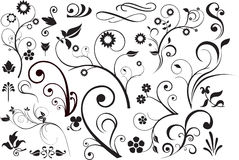 Floral and swirls Royalty Free Stock Photography