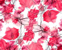 Floral Swirls Decorative Background Royalty Free Stock Image