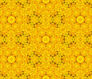 Floral symmetric design. Stock Images