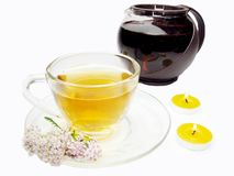 Floral tea with medical flowers Royalty Free Stock Photos