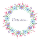 Floral template with carpe diem script Stock Photography