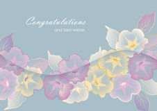 Floral template greeting card with pastel flowers Stock Image