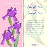 Floral template with irises. Royalty Free Stock Images