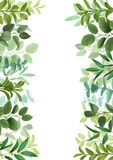 Template with Greenery. Floral template wich herb and bushes branches with leaves in watercolor style. Greenery botanical mock up vertical double borders with royalty free illustration