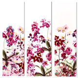 Floral templates or invitation with orchid flowers Stock Photos