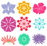 Floral templates Royalty Free Stock Images