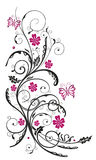 Floral tendril, flowers, pink Stock Images