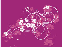 Floral texture. Illustration can be used for different purposes Royalty Free Stock Photos