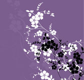 Floral texture. Illustration can be used for different purposes Stock Photos