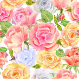 Floral Texture Stock Image