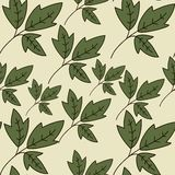Floral texture with green leaves. Use as a fill pattern, backdrop, seamless texture Stock Photography