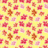 Floral texture with stylish seamless hibiscus pattern Royalty Free Stock Photos
