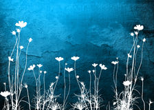 Floral textures Stock Photos