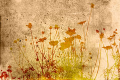 Floral textures. Floral style backgrounds and textures Stock Photos