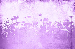 Floral textures Royalty Free Stock Photography