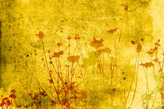 Floral textures Stock Images