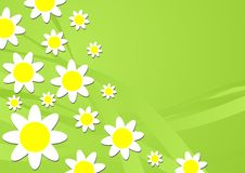Floral theme_10 Royalty Free Stock Image