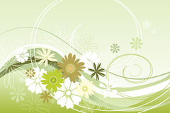 Floral theme in green. Vector illustration of a floral theme in green Royalty Free Stock Images