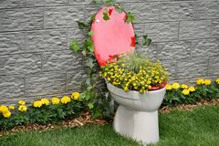 Floral toilet Stock Image