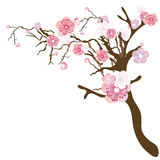 Floral tree. Illustration of a floral tree Royalty Free Stock Photography