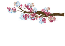 Floral tree branch. Illustration of a floral tree branch Royalty Free Stock Photo