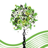 Floral tree green background Royalty Free Stock Image