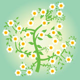 Floral tree. Illustration with a beautiful floral tree Royalty Free Stock Images
