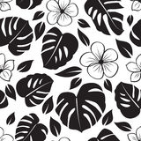 Floral tropical pattern Royalty Free Stock Images
