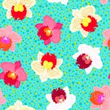 Floral tropical pattern with orchid flowers. Floral seamless vector pattern with tropical decor and orchid flowers in bright variety of pink, red, white and Stock Photography