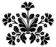 Floral vector Royalty Free Stock Image