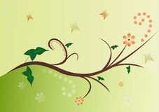 FLORAL VECTOR. Beautiful abstract vector floral design Royalty Free Stock Images