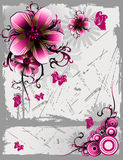 Floral vector Royalty Free Stock Photos
