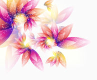 Floral vector abstract background Stock Image