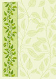 Floral vector background. Decorative  floral background page Royalty Free Stock Photo