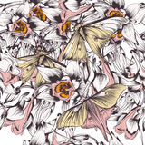 Floral vector background with butterflies and flowers filigree d Royalty Free Stock Photography
