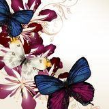 Floral vector background with butterflies and flowers Royalty Free Stock Images
