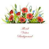 Floral vector background. Royalty Free Stock Photography