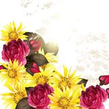 Floral vector background with rose flowers. Wedding vector greeting card with roses and yellow  flowers  in vintage style for design Royalty Free Stock Photos