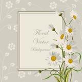 Floral vector background. royalty free illustration