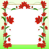 Floral vector card Royalty Free Stock Image