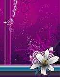 Floral vector composition Stock Photo