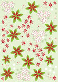 Floral vector design. Pattern background Royalty Free Stock Image