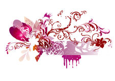 Floral  vector design in pink color Royalty Free Stock Image
