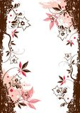 Floral Vector Elements Royalty Free Stock Photo