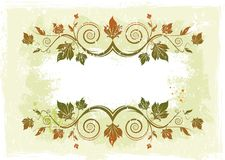 Floral vector frame Stock Photo