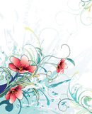 Floral vector illustration. Floral and plants vector illustration Royalty Free Stock Images