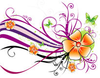 Floral vector illustration Royalty Free Stock Image