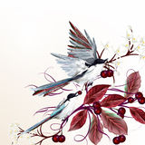 Floral vector illustration with birds and branches Stock Photography