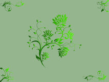 Floral Vector illustration of light green backgrou Royalty Free Stock Photo